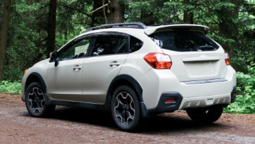 Rear of white crossover SUV parked on a road surrounded by trees